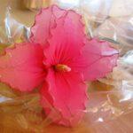 cvijet6