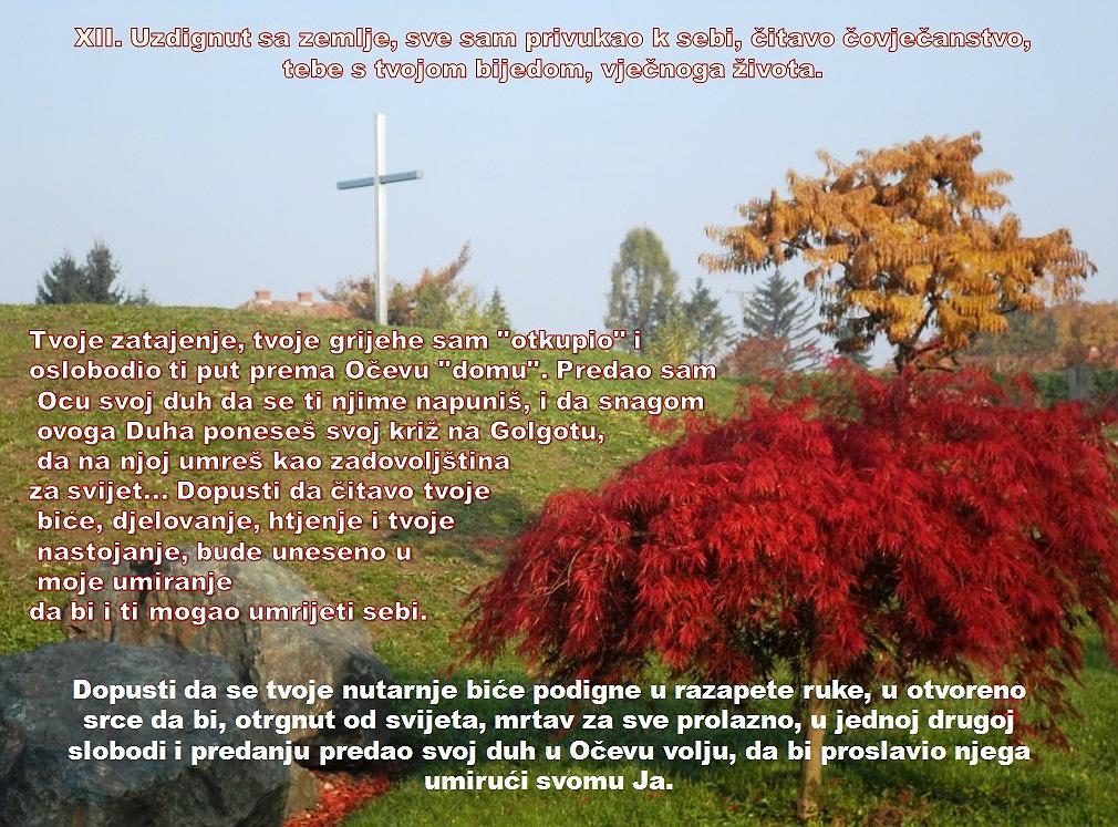 XII. POSTAJA: ISUS UMIRE NA KRIŽU