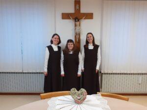1.Postulantice